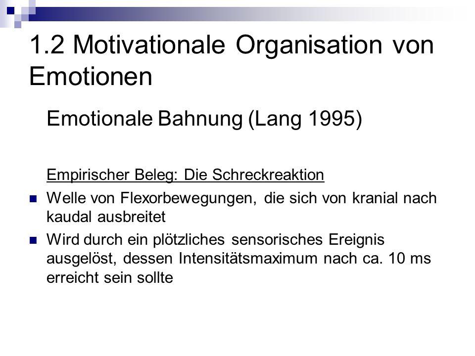 1.2 Motivationale Organisation von Emotionen Emotionale Bahnung (Lang 1995) Empirischer Beleg: Die Schreckreaktion Welle von Flexorbewegungen, die sich von kranial nach kaudal ausbreitet Wird durch ein plötzliches sensorisches Ereignis ausgelöst, dessen Intensitätsmaximum nach ca.