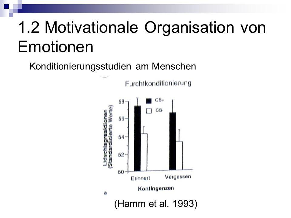 1.2 Motivationale Organisation von Emotionen Konditionierungsstudien am Menschen (Hamm et al. 1993)