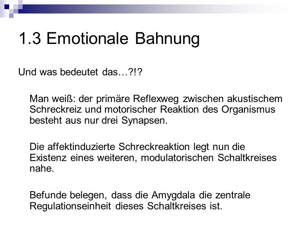 1.3 Emotionale Bahnung Und was bedeutet das…?!.