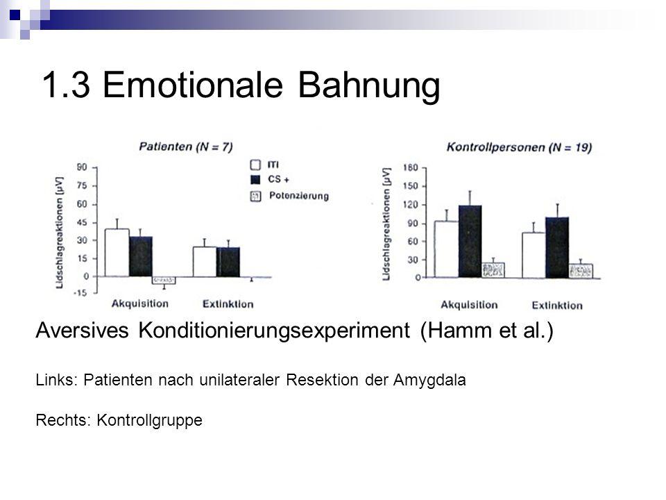 1.3 Emotionale Bahnung Aversives Konditionierungsexperiment (Hamm et al.) Links: Patienten nach unilateraler Resektion der Amygdala Rechts: Kontrollgruppe