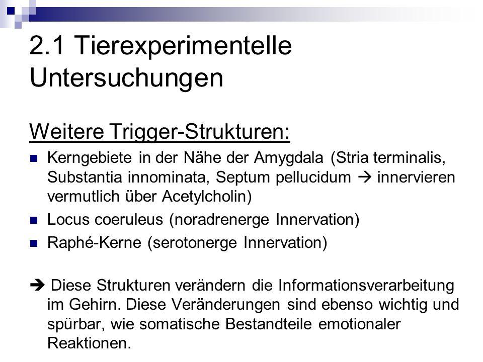 2.1 Tierexperimentelle Untersuchungen Weitere Trigger-Strukturen: Kerngebiete in der Nähe der Amygdala (Stria terminalis, Substantia innominata, Septum pellucidum innervieren vermutlich über Acetylcholin) Locus coeruleus (noradrenerge Innervation) Raphé-Kerne (serotonerge Innervation) Diese Strukturen verändern die Informationsverarbeitung im Gehirn.