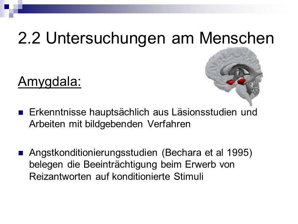 Amygdala: Erkenntnisse hauptsächlich aus Läsionsstudien und Arbeiten mit bildgebenden Verfahren Angstkonditionierungsstudien (Bechara et al 1995) belegen die Beeinträchtigung beim Erwerb von Reizantworten auf konditionierte Stimuli