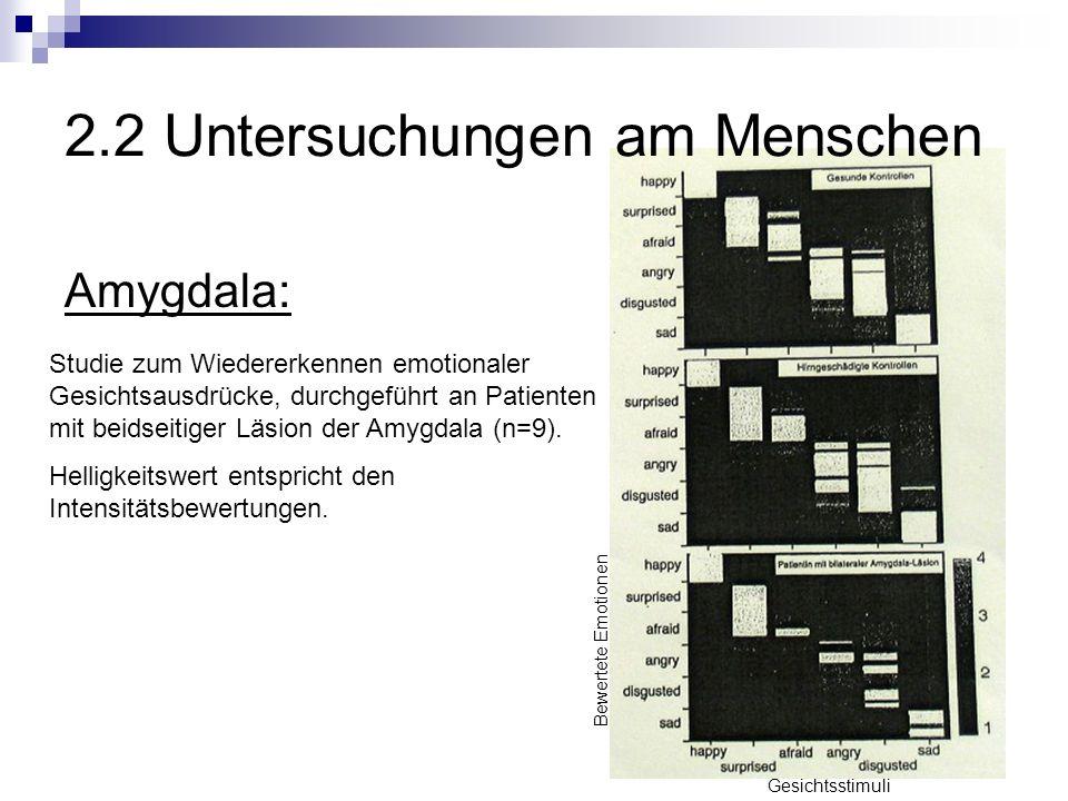 2.2 Untersuchungen am Menschen Amygdala: Studie zum Wiedererkennen emotionaler Gesichtsausdrücke, durchgeführt an Patienten mit beidseitiger Läsion der Amygdala (n=9).