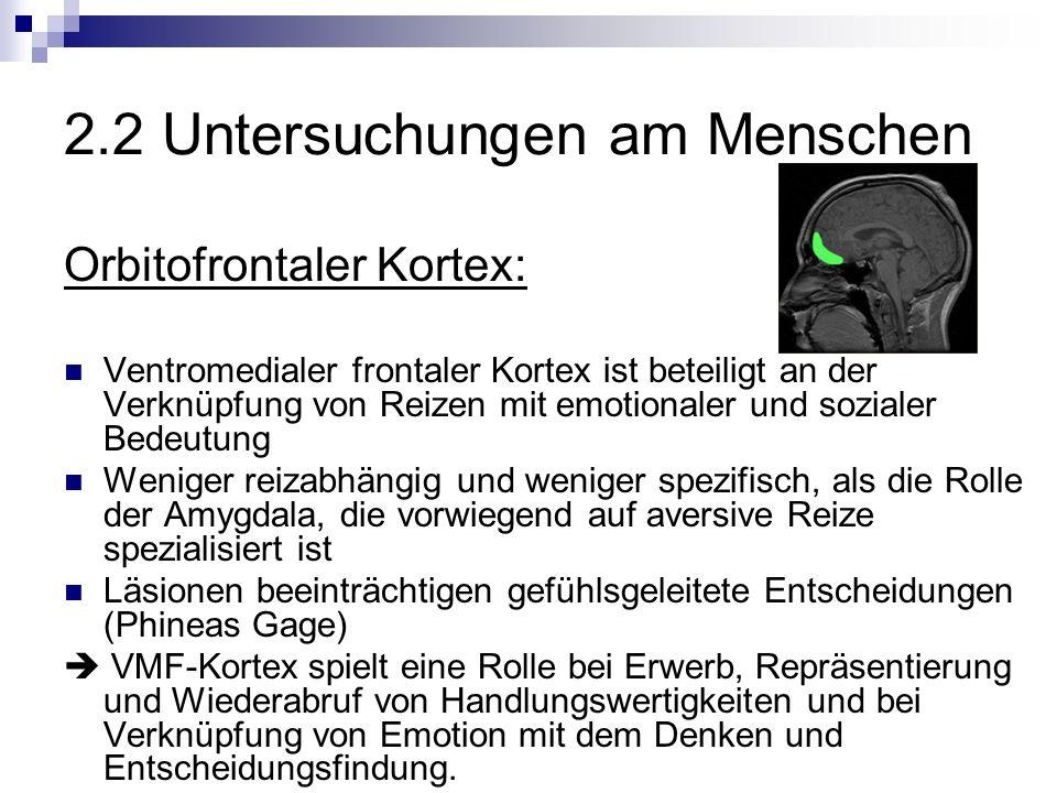 2.2 Untersuchungen am Menschen Orbitofrontaler Kortex: Ventromedialer frontaler Kortex ist beteiligt an der Verknüpfung von Reizen mit emotionaler und sozialer Bedeutung Weniger reizabhängig und weniger spezifisch, als die Rolle der Amygdala, die vorwiegend auf aversive Reize spezialisiert ist Läsionen beeinträchtigen gefühlsgeleitete Entscheidungen (Phineas Gage) VMF-Kortex spielt eine Rolle bei Erwerb, Repräsentierung und Wiederabruf von Handlungswertigkeiten und bei Verknüpfung von Emotion mit dem Denken und Entscheidungsfindung.