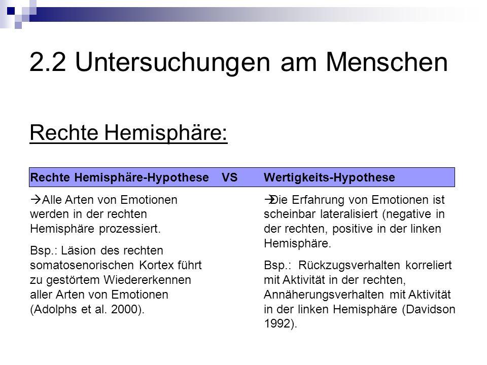 2.2 Untersuchungen am Menschen Rechte Hemisphäre: Rechte Hemisphäre-Hypothese Alle Arten von Emotionen werden in der rechten Hemisphäre prozessiert.