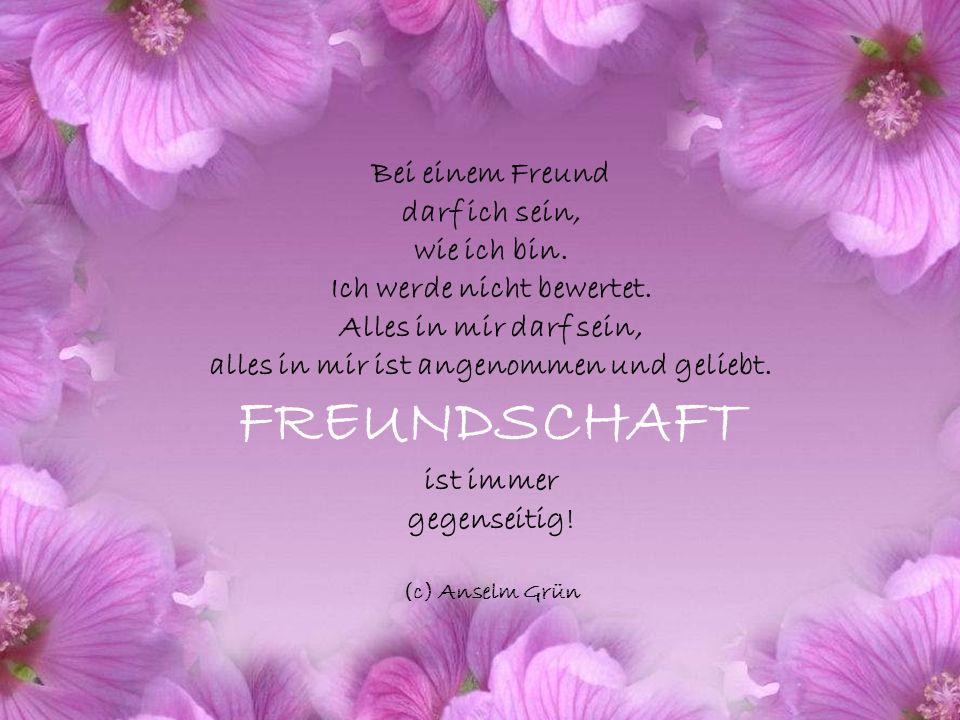 Es ist für viele beglückend, einen Seelenfreund oder eine Seelenfreundin zu haben. Bei ihnen spüren sie, dass sie die gleiche Wellenlänge haben, dass
