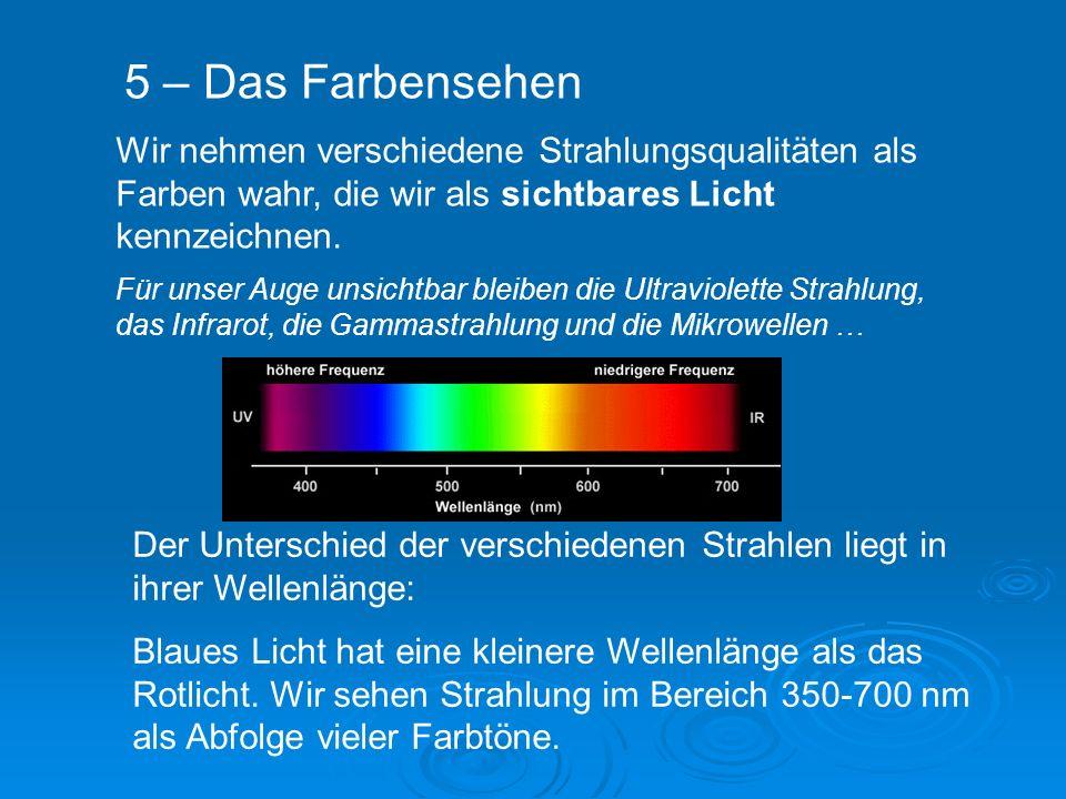 Wir nehmen verschiedene Strahlungsqualitäten als Farben wahr, die wir als sichtbares Licht kennzeichnen.