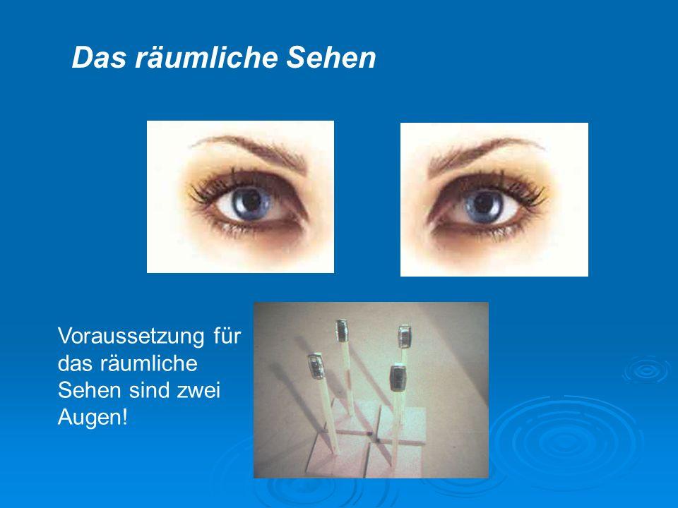 Voraussetzung für das räumliche Sehen sind zwei Augen! Das räumliche Sehen