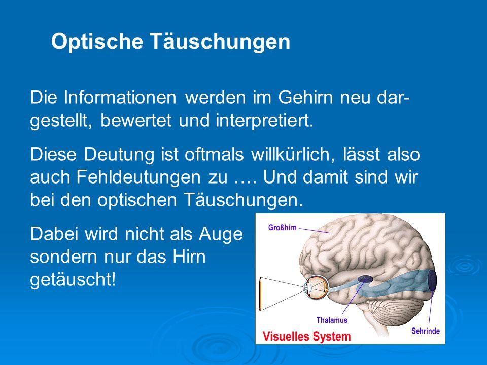 Die Informationen werden im Gehirn neu dar- gestellt, bewertet und interpretiert.