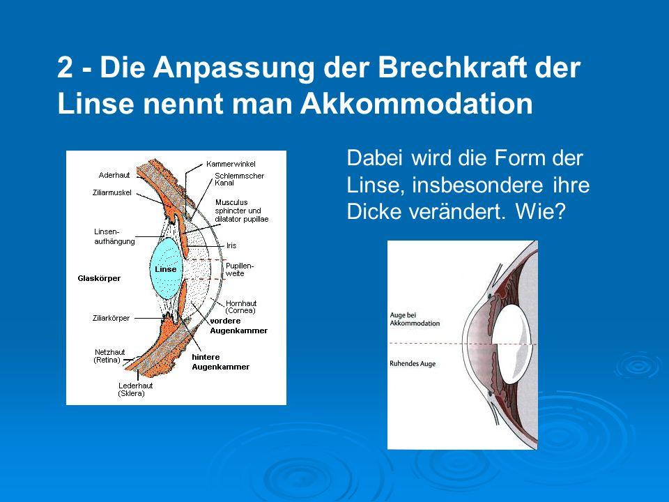 1 - Bau des Auges 2 - Akkommodation 3 – Adaptation 4 – Netzhaut 5 – Farbensehen 6 - Räuml.