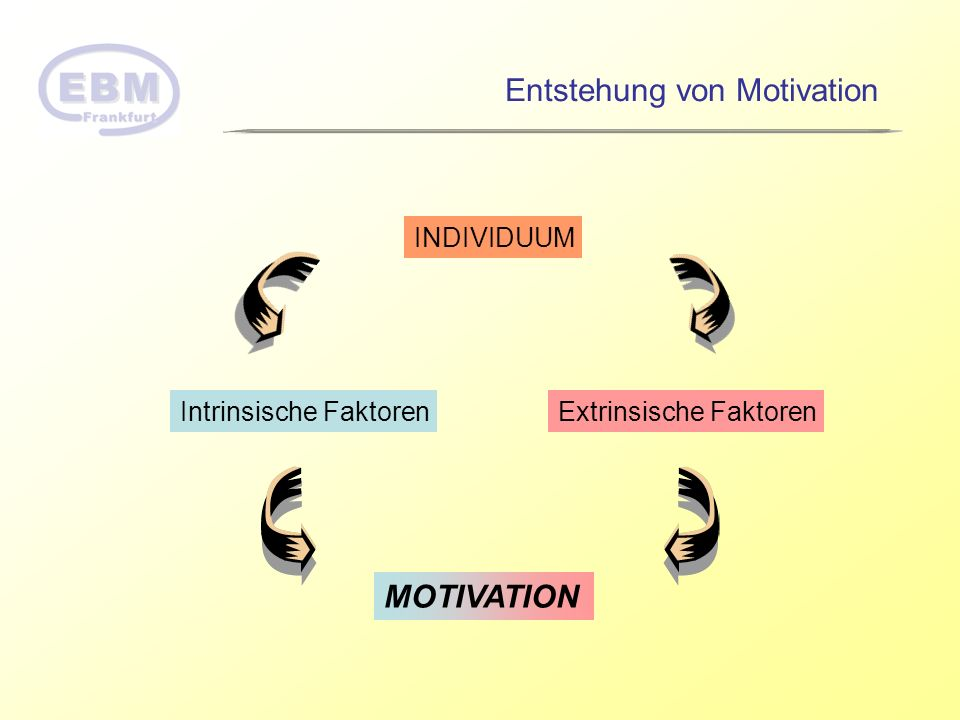 INDIVIDUUM Intrinsische FaktorenExtrinsische Faktoren MOTIVATION Entstehung von Motivation