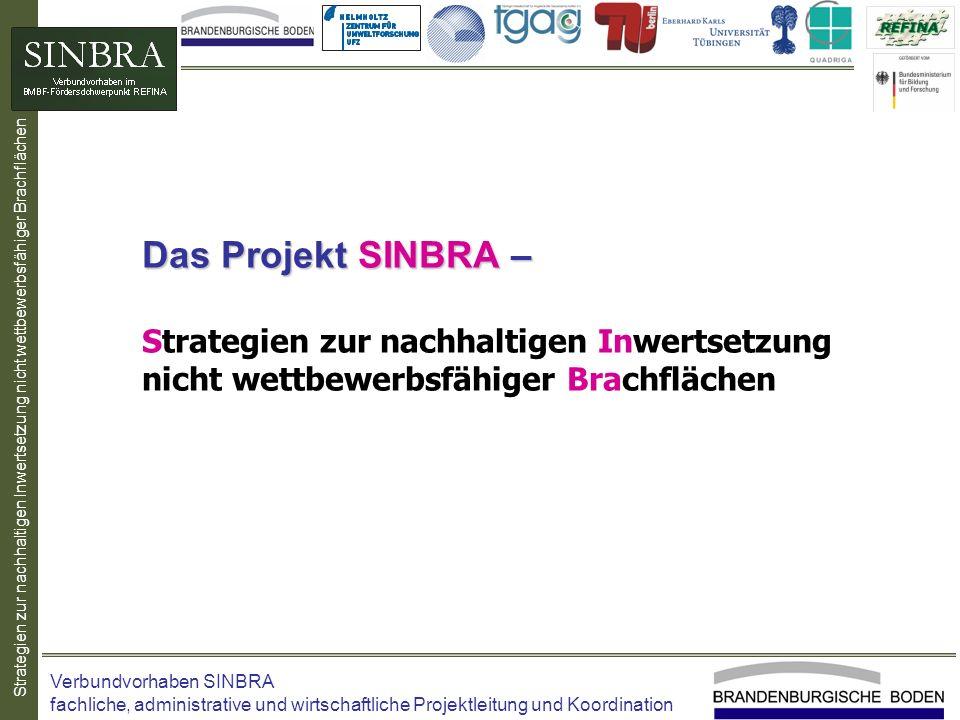 Strategien zur nachhaltigen Inwertsetzung nicht wettbewerbsfähiger Brachflächen Das Projekt SINBRA – Das Projekt SINBRA – Strategien zur nachhaltigen