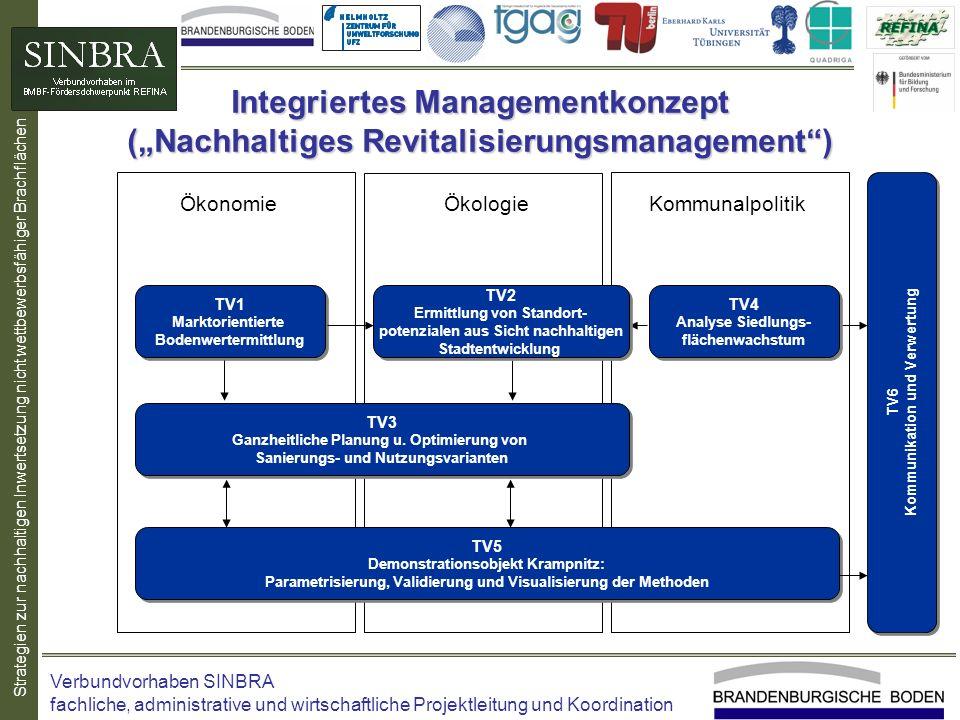 Strategien zur nachhaltigen Inwertsetzung nicht wettbewerbsfähiger Brachflächen Integriertes Managementkonzept (Nachhaltiges Revitalisierungsmanagemen