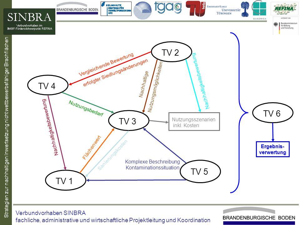 Strategien zur nachhaltigen Inwertsetzung nicht wettbewerbsfähiger Brachflächen TV 1 TV 2 TV 3 TV 4 TV 5 TV 6 Vergleichende Bewertung erfolgter Siedlu