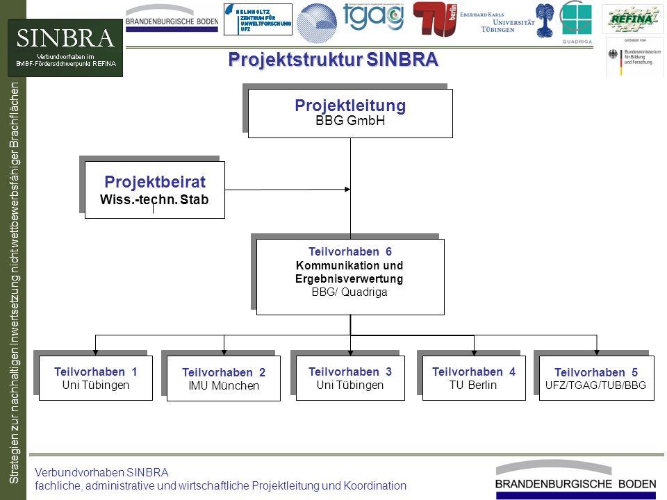 Strategien zur nachhaltigen Inwertsetzung nicht wettbewerbsfähiger Brachflächen Projektstruktur SINBRA Verbundvorhaben SINBRA fachliche, administrativ