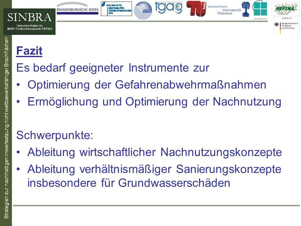 Fazit Es bedarf geeigneter Instrumente zur Optimierung der Gefahrenabwehrmaßnahmen Ermöglichung und Optimierung der Nachnutzung Schwerpunkte: Ableitun