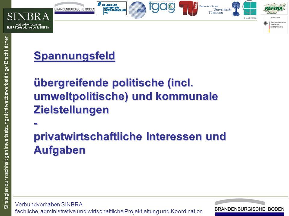 Strategien zur nachhaltigen Inwertsetzung nicht wettbewerbsfähiger Brachflächen Spannungsfeld übergreifende politische (incl. umweltpolitische) und ko