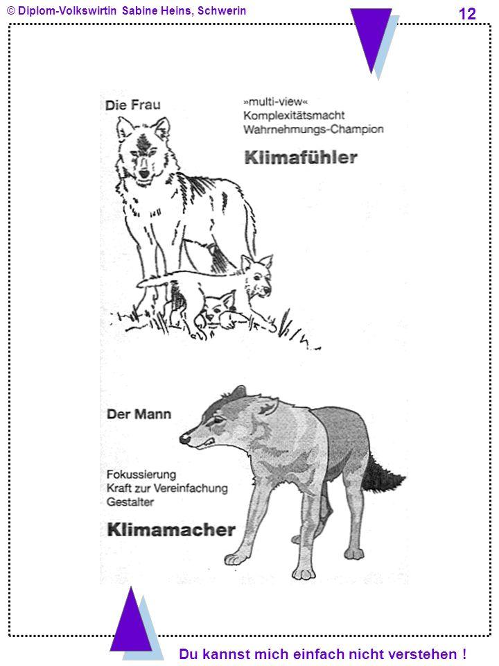 Du kannst mich einfach nicht verstehen ! © Diplom-Volkswirtin Sabine Heins, Schwerin 12