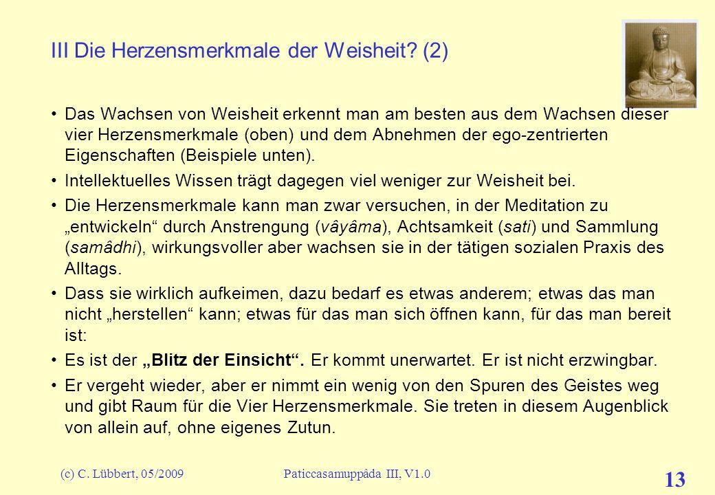 (c) C. Lübbert, 05/2009Paticcasamuppâda III, V1.0 13 III Die Herzensmerkmale der Weisheit? (2) Das Wachsen von Weisheit erkennt man am besten aus dem