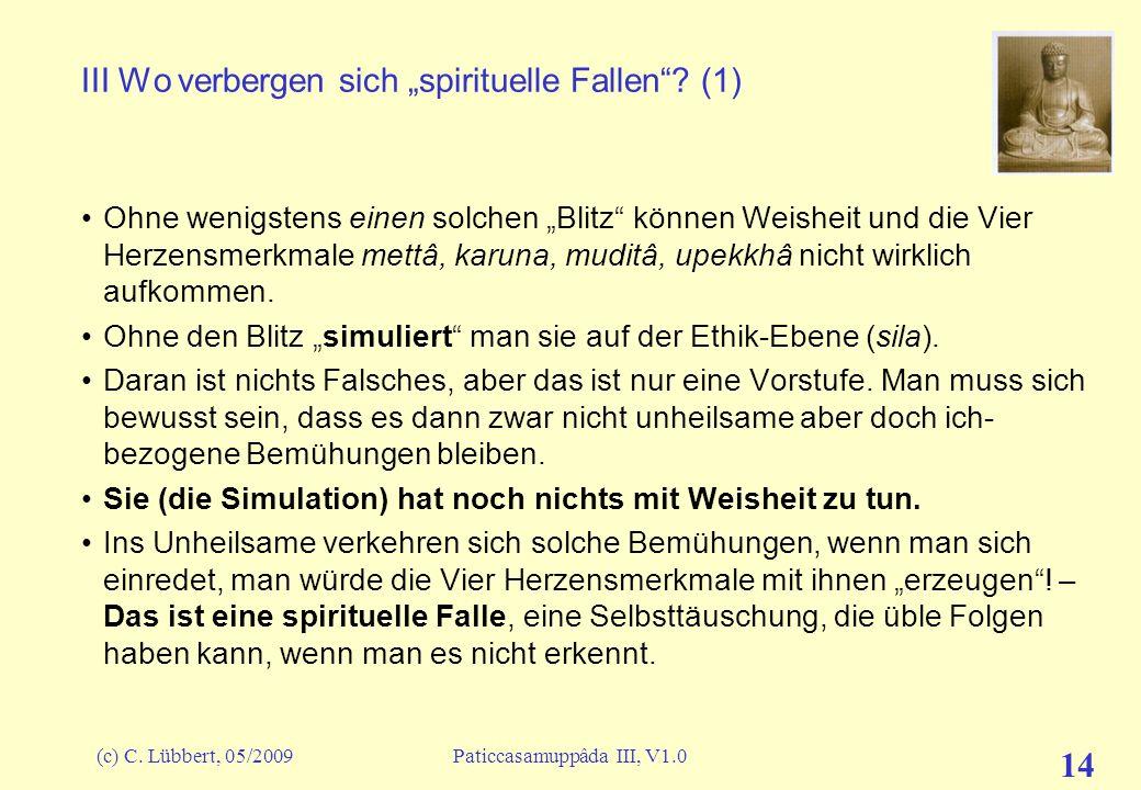 (c) C. Lübbert, 05/2009Paticcasamuppâda III, V1.0 14 III Wo verbergen sich spirituelle Fallen? (1) Ohne wenigstens einen solchen Blitz können Weisheit