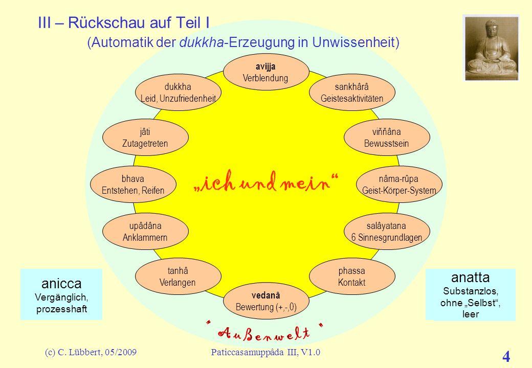 (c) C. Lübbert, 05/2009Paticcasamuppâda III, V1.0 4 ich und mein III – Rückschau auf Teil I (Automatik der dukkha-Erzeugung in Unwissenheit) avijja Ve