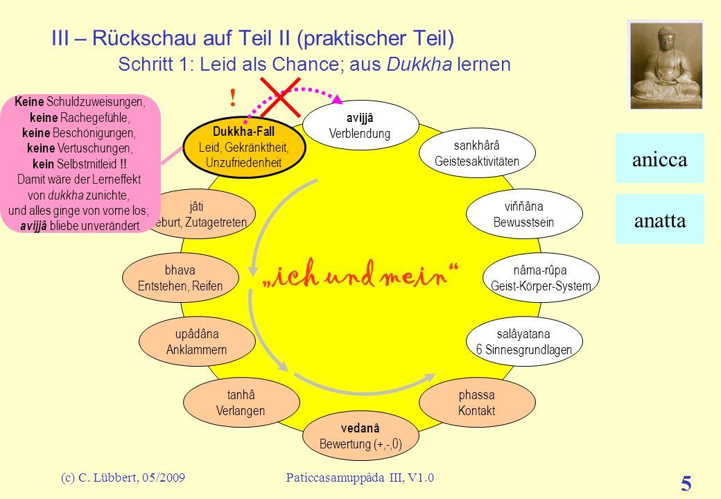 (c) C. Lübbert, 05/2009Paticcasamuppâda III, V1.0 5 III – Rückschau auf Teil II (praktischer Teil) Schritt 1: Leid als Chance; aus Dukkha lernen ich u
