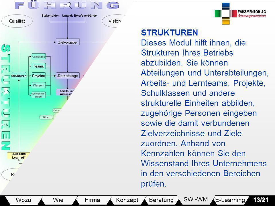 E-LearningSW -WMBeratungKonzeptFirmaWie Wozu13/21 STRUKTUREN Dieses Modul hilft ihnen, die Strukturen Ihres Betriebs abzubilden. Sie können Abteilunge