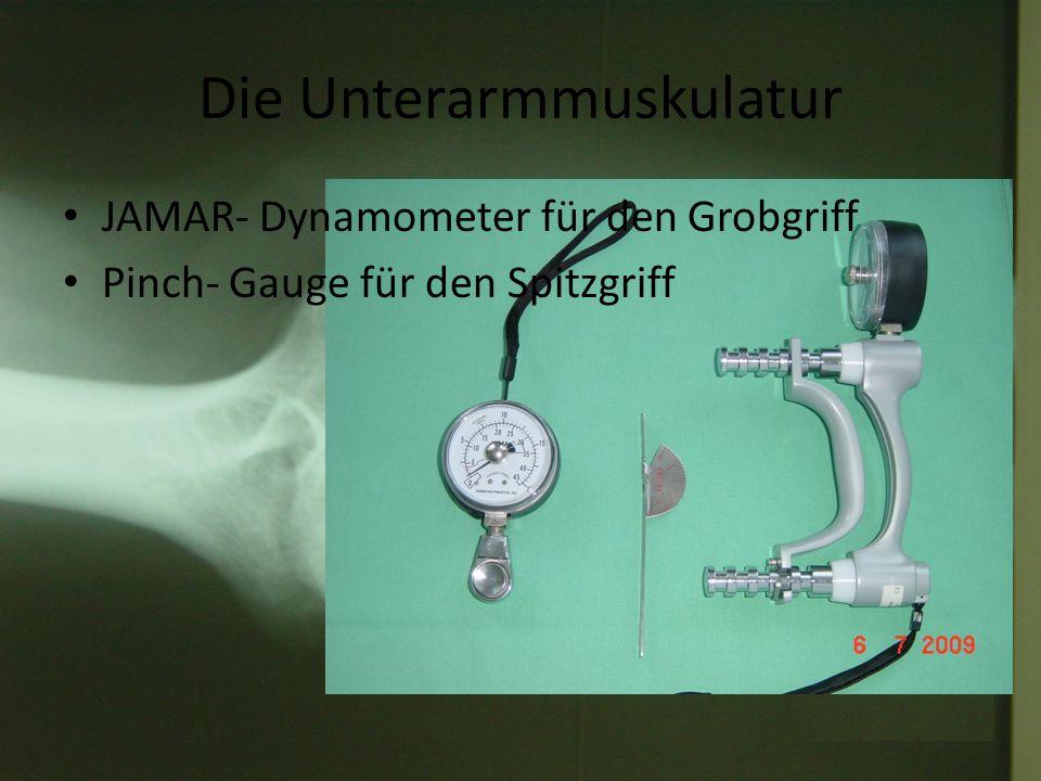 Die Unterarmmuskulatur JAMAR- Dynamometer für den Grobgriff Pinch- Gauge für den Spitzgriff