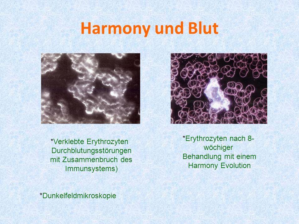 Harmony und Blut *Verklebte Erythrozyten Durchblutungsstörungen mit Zusammenbruch des Immunsystems) *Erythrozyten nach 8- wöchiger Behandlung mit eine