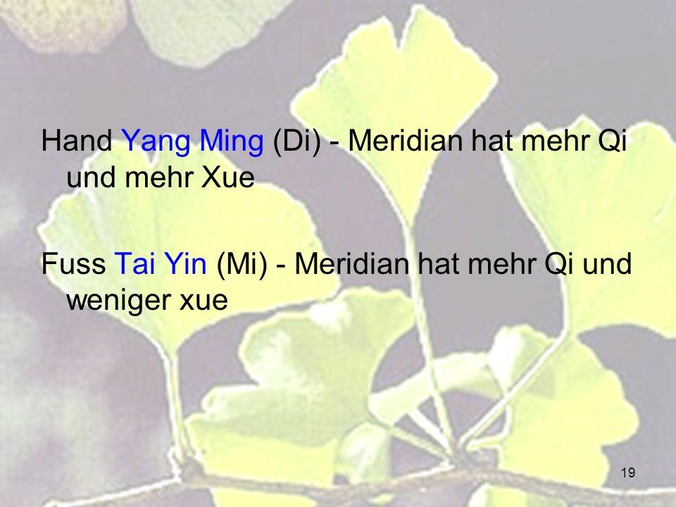 19 Hand Yang Ming (Di) - Meridian hat mehr Qi und mehr Xue Fuss Tai Yin (Mi) - Meridian hat mehr Qi und weniger xue