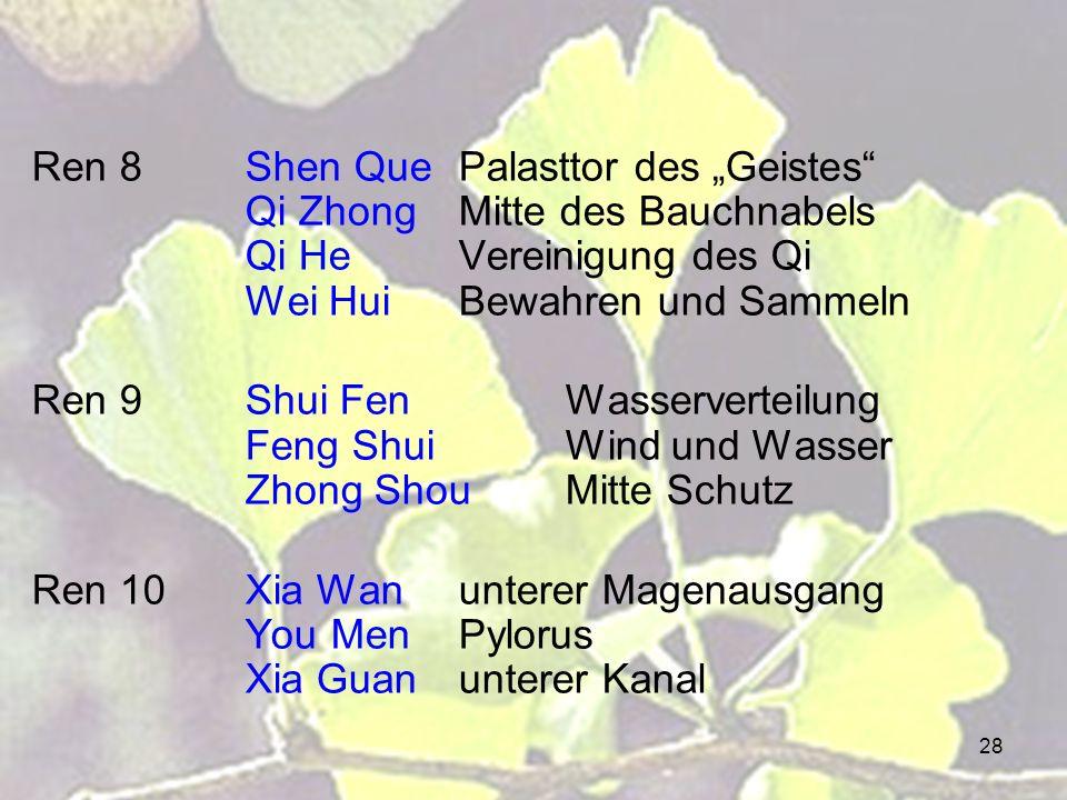 28 Ren 8Shen QuePalasttor des Geistes Qi ZhongMitte des Bauchnabels Qi HeVereinigung des Qi Wei HuiBewahren und Sammeln Ren 9Shui FenWasserverteilung
