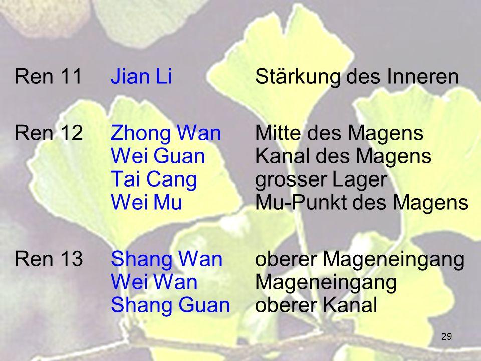 29 Ren 11Jian LiStärkung des Inneren Ren 12Zhong WanMitte des Magens Wei GuanKanal des Magens Tai Canggrosser Lager Wei MuMu-Punkt des Magens Ren 13Shang Wanoberer Mageneingang Wei WanMageneingang Shang Guanoberer Kanal