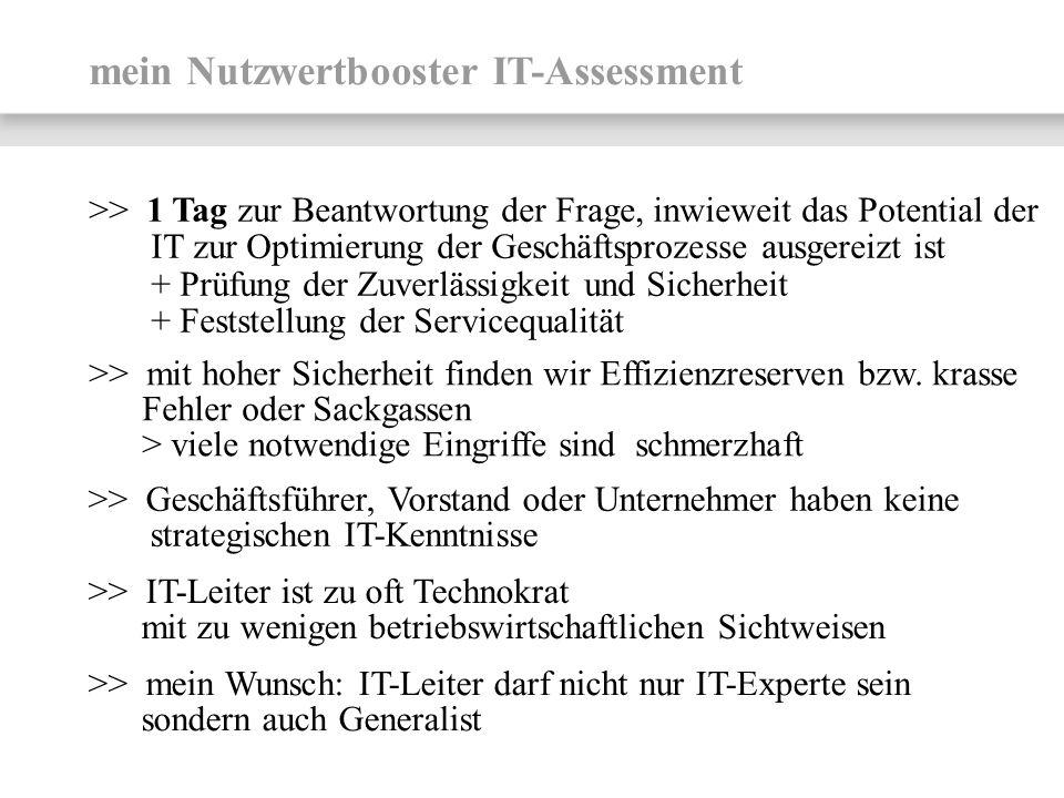 mein Nutzwertbooster IT-Assessment >> 1 Tag zur Beantwortung der Frage, inwieweit das Potential der IT zur Optimierung der Geschäftsprozesse ausgereiz