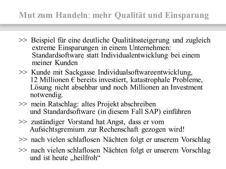 Mut zum Handeln: mehr Qualität und Einsparung >> Kunde mit Sackgasse Individualsoftwareentwicklung, 12 Millionen bereits investiert, katastrophale Pro