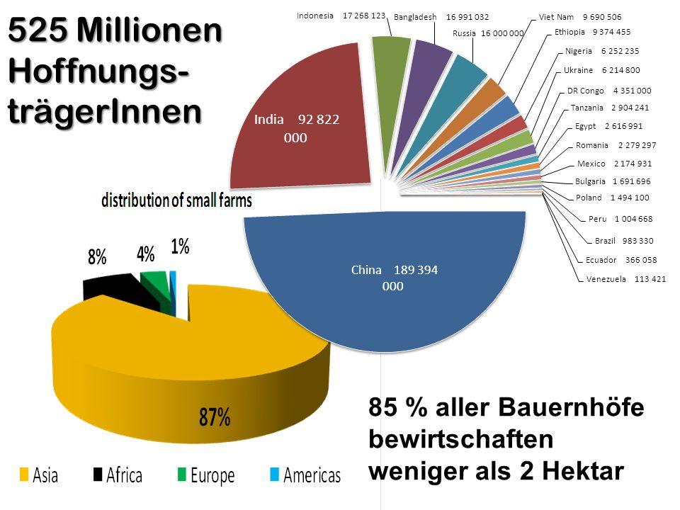 525 Millionen Hoffnungs- trägerInnen 85 % aller Bauernhöfe bewirtschaften weniger als 2 Hektar