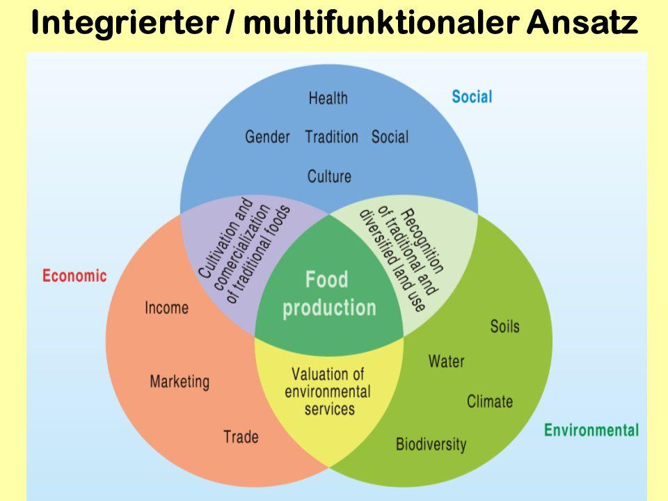 Integrierter / multifunktionaler Ansatz