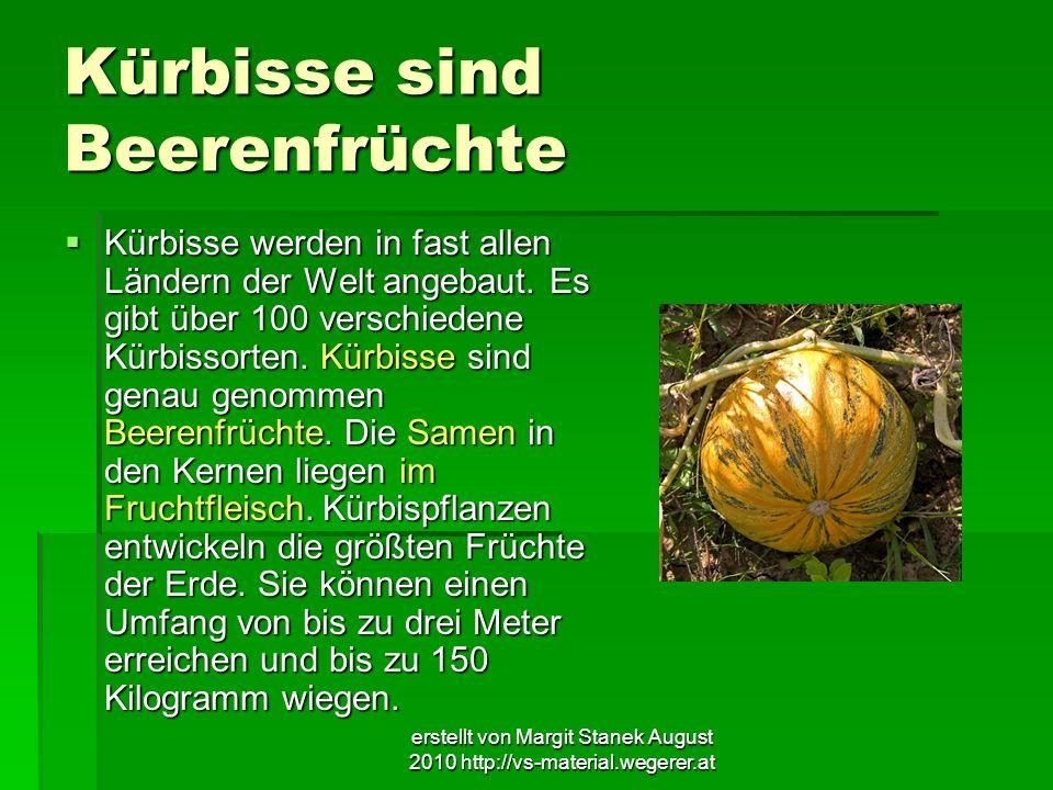 erstellt von Margit Stanek August 2010 http://vs-material.wegerer.at Kürbisse sind Beerenfrüchte Kürbisse werden in fast allen Ländern der Welt angeba