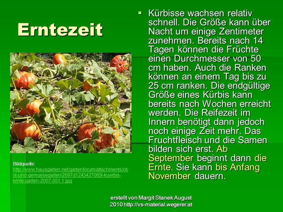 erstellt von Margit Stanek August 2010 http://vs-material.wegerer.at Erntezeit Kürbisse wachsen relativ schnell. Die Größe kann über Nacht um einige Z