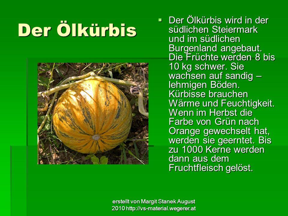 erstellt von Margit Stanek August 2010 http://vs-material.wegerer.at Der Ölkürbis Der Ölkürbis wird in der südlichen Steiermark und im südlichen Burge