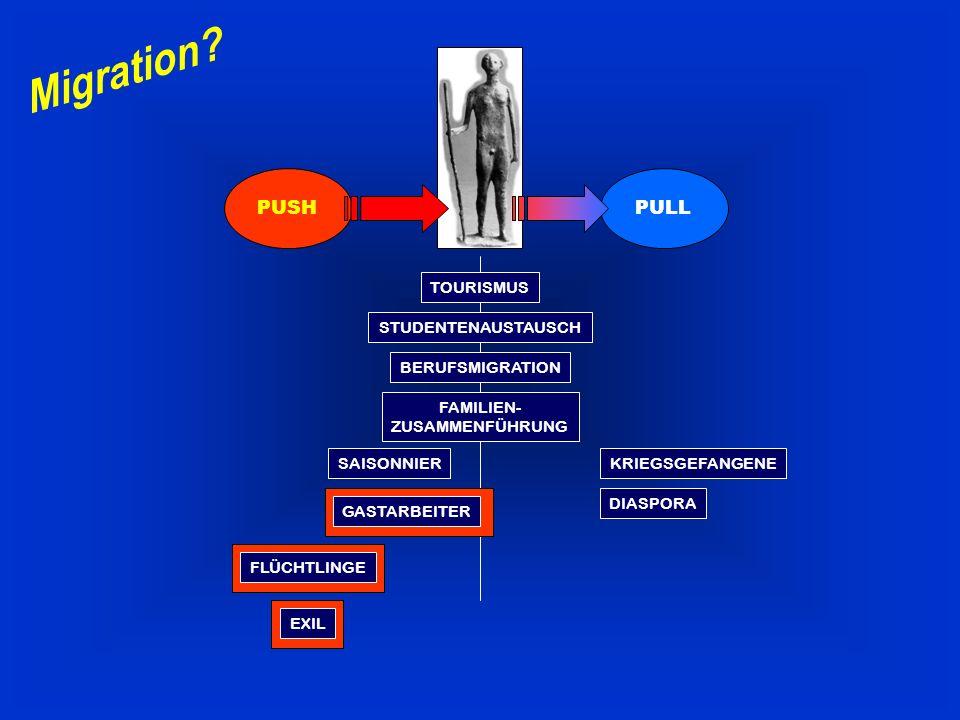 Pull-Faktoren (Sogfaktoren) Alle Bedingungen des Aufnahmelandes bzw.