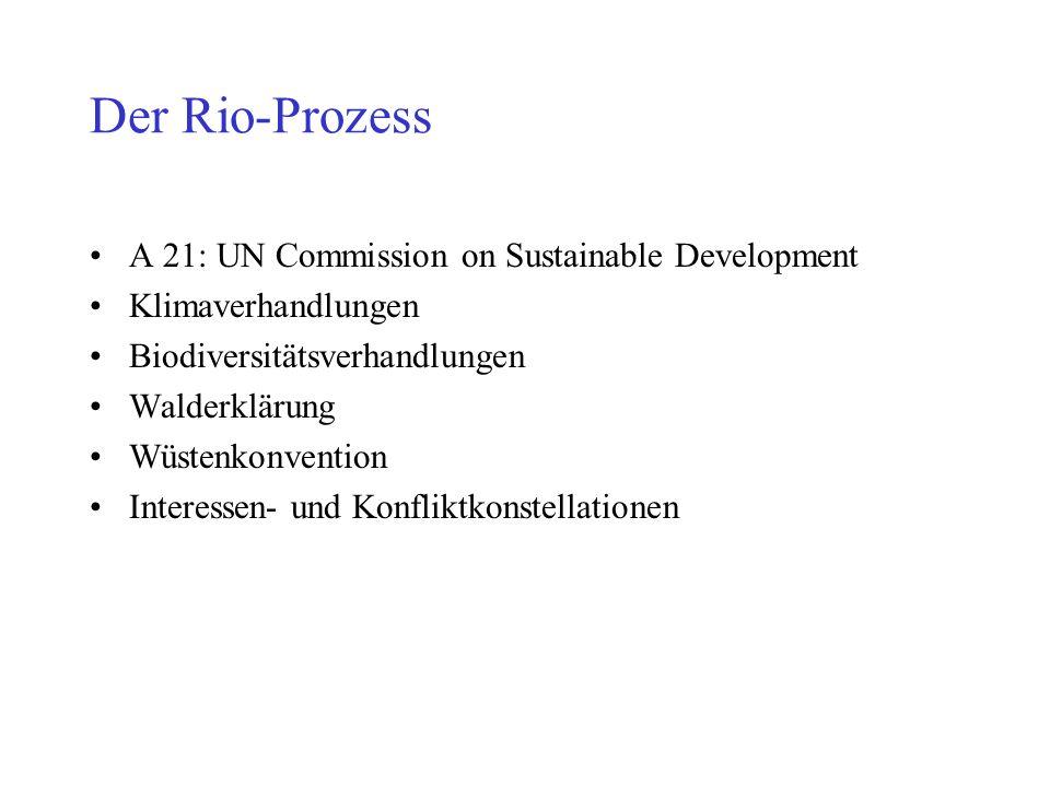 Der Rio-Prozess A 21: UN Commission on Sustainable Development Klimaverhandlungen Biodiversitätsverhandlungen Walderklärung Wüstenkonvention Interessen- und Konfliktkonstellationen