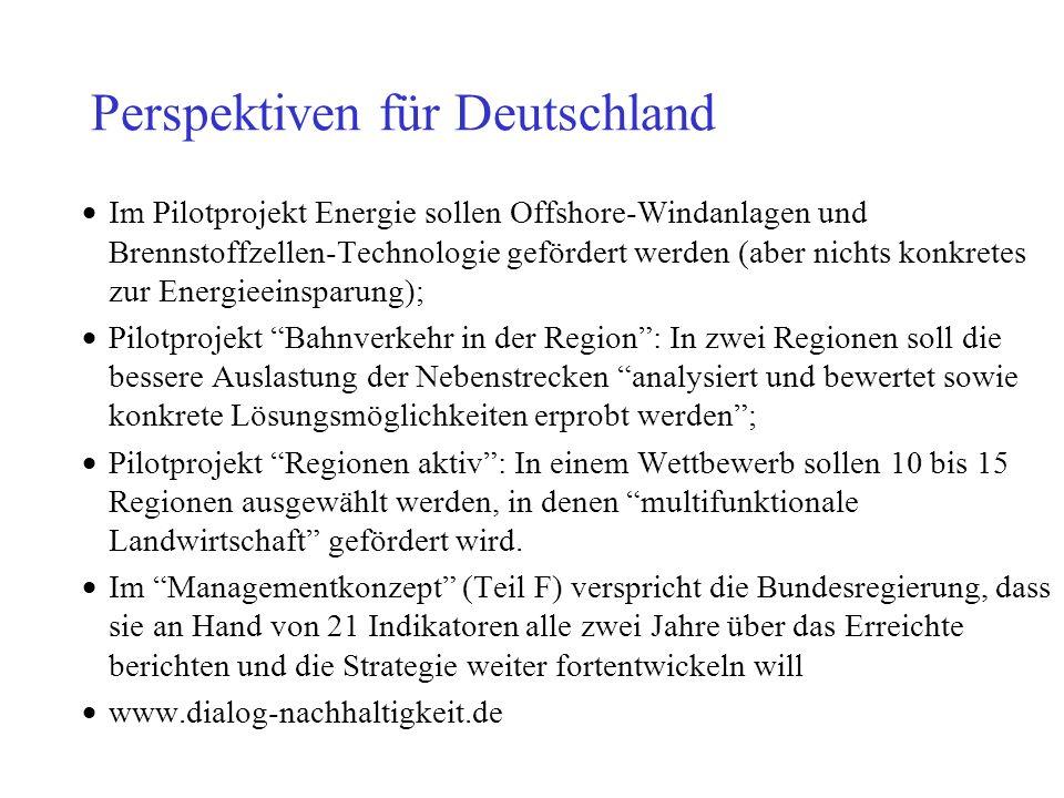 Perspektiven für Deutschland Im Pilotprojekt Energie sollen Offshore-Windanlagen und Brennstoffzellen-Technologie gefördert werden (aber nichts konkre