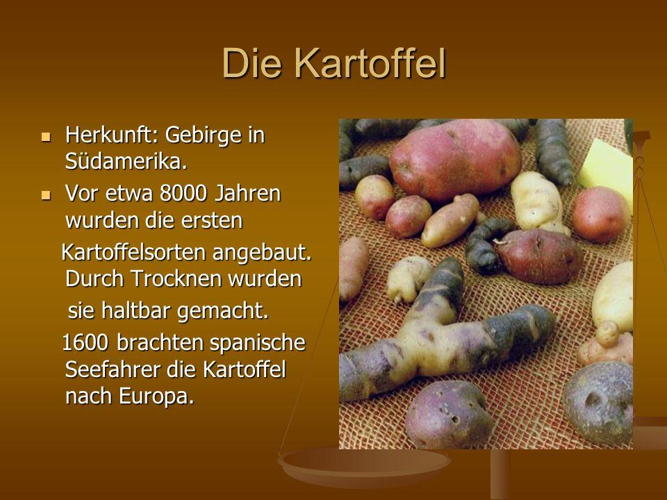 Die Kartoffel Herkunft: Gebirge in Südamerika. Herkunft: Gebirge in Südamerika. Vor etwa 8000 Jahren wurden die ersten Vor etwa 8000 Jahren wurden die