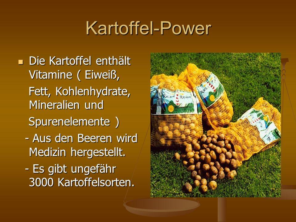 Kartoffel-Power Die Kartoffel enthält Vitamine ( Eiweiß, Die Kartoffel enthält Vitamine ( Eiweiß, Fett, Kohlenhydrate, Mineralien und Fett, Kohlenhydr