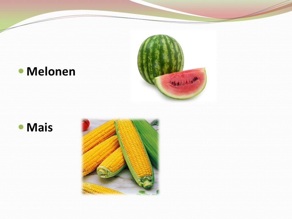 Melonen Mais