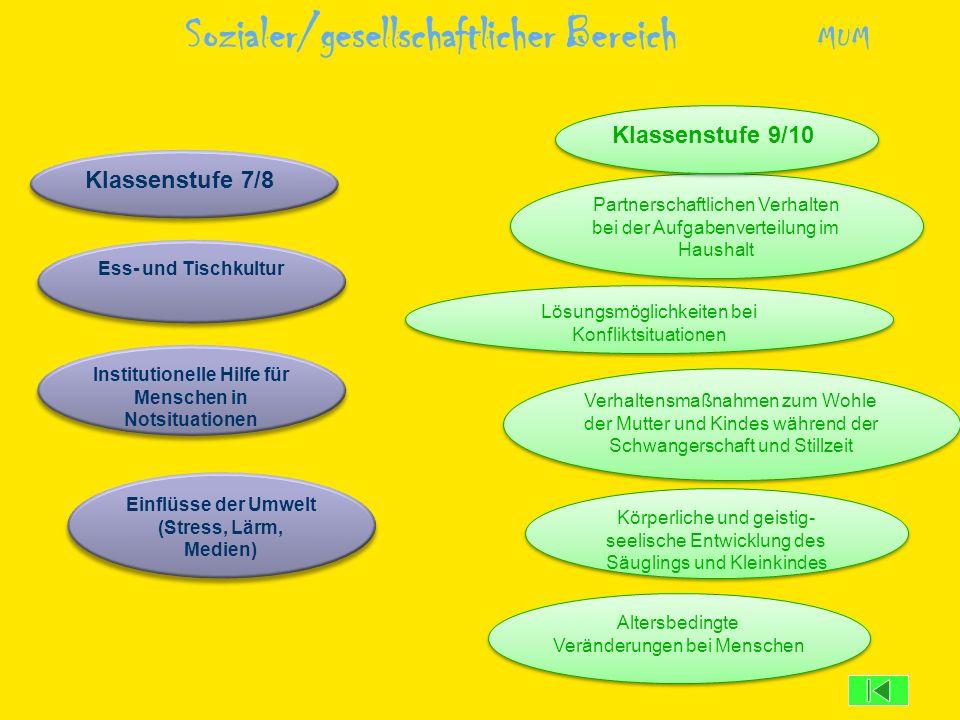 Lösungsmöglichkeiten bei Konfliktsituationen Partnerschaftlichen Verhalten bei der Aufgabenverteilung im Haushalt Körperliche und geistig- seelische E