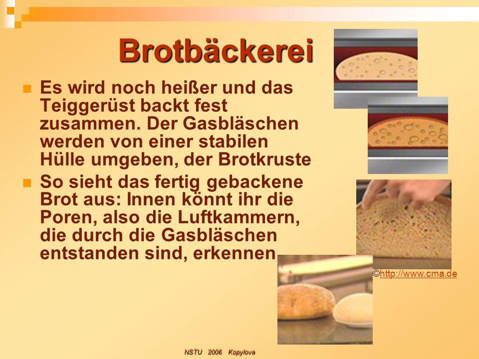 Brotbäckerei Es wird noch heißer und das Teiggerüst backt fest zusammen. Der Gasbläschen werden von einer stabilen Hülle umgeben, der Brotkruste So si