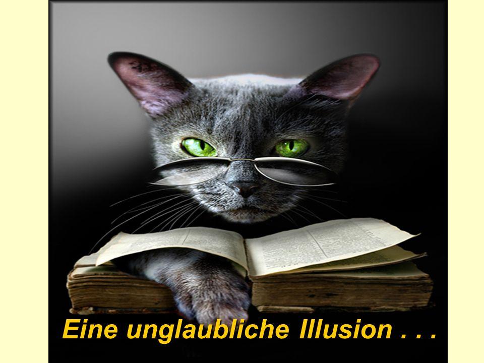 Eine unglaubliche Illusion...