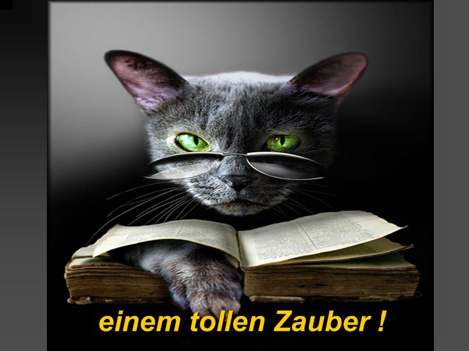 Ich, die Katze mit den 7 Leben, werde Ihre Gedanken lesen !