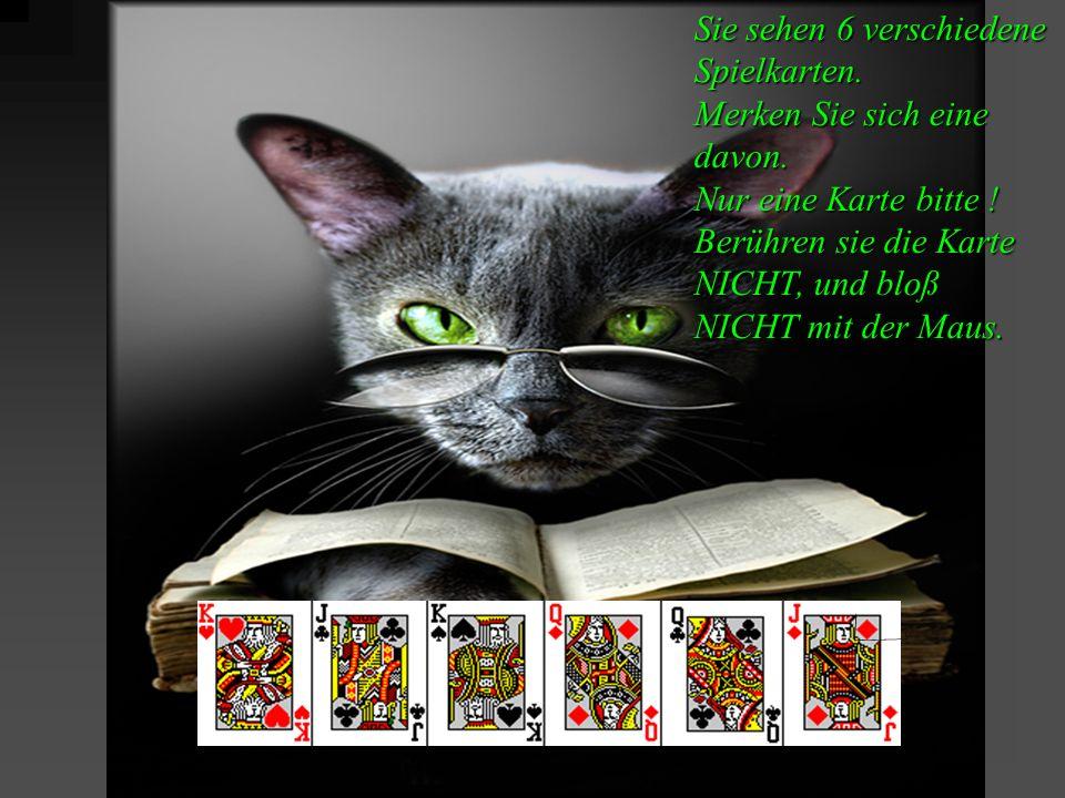Sie sehen 6 verschiedene Spielkarten. Merken Sie sich eine davon.